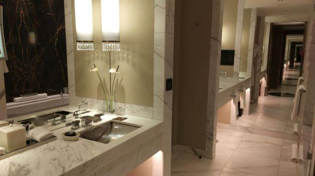 PArk Hyatt Vienna Park Suite 4