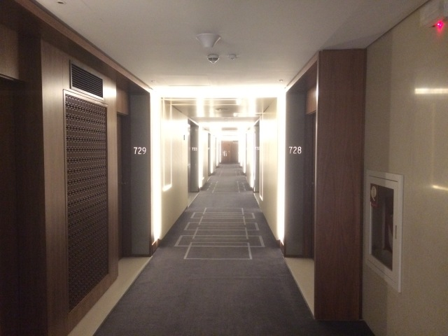 Hilton Barra Hallway
